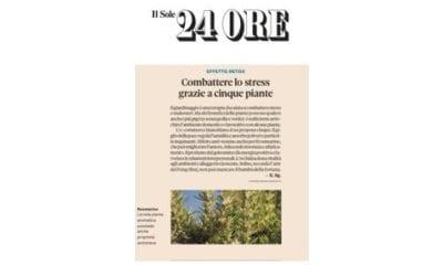 Il Sole 24 Ore: Le 5 piante proposte da ManoMano